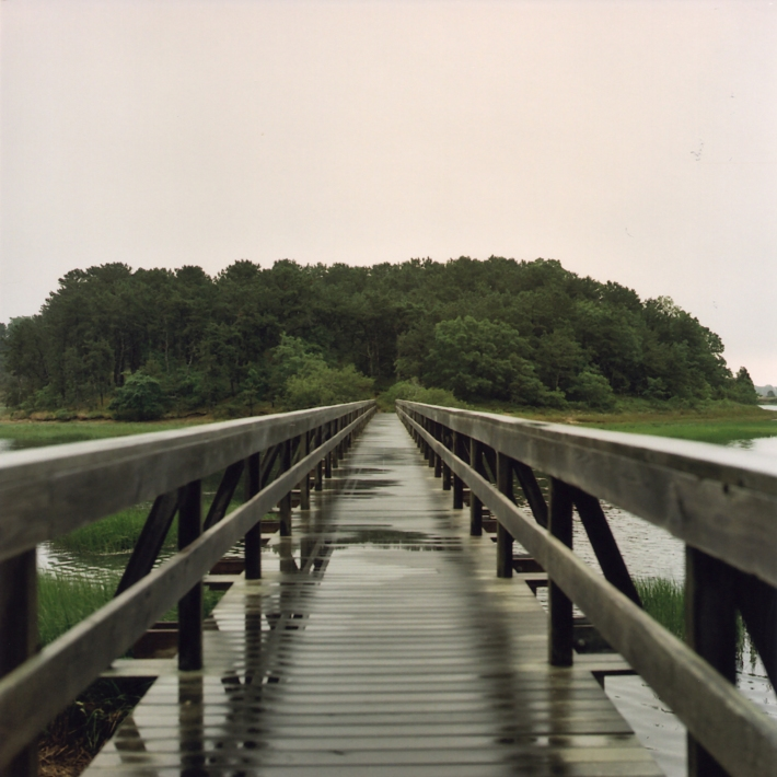 Wellfleet 2
